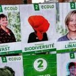 Belgian Green parties introduce bill to make ecocide a crime – and support ecocide amendment to the Rome Statute of the International Criminal Court