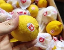 Counterfeit Lemons !   Only in China