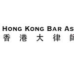 Hong Kong Bar Assic says election delay may be 'unlawful'