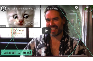 Russell Brand Reacts to Cat Lawyer Viral Video