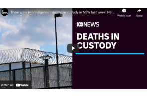 Australia: There were two Indigenous deaths in custody in NSW last week. Neither were announced | ABC News