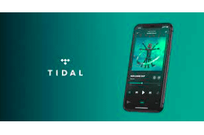 Position: Director, Business Affairs and Licensing, TIDAL