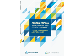 Report: Carbon pricing assessment and decision-making: a guide to adopting a carbon price