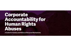 Watch FIDH's webinar on Recent Developments in Corporate Accountability