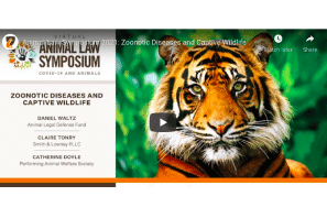 May 2021: Animal Law Symposium 2021: Zoonotic Diseases and Captive Wildlife