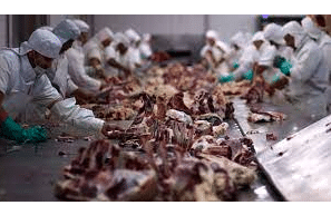 DeSmog: Investigation: How the Meat Industry is Climate-Washing its Polluting Business Model