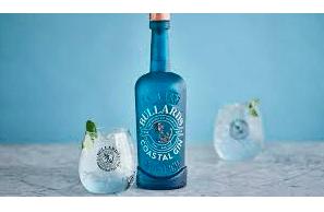 Red Bull in trademark dispute with Bullards Gin