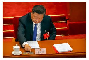 Article - China: Reining in Rogue Legislation